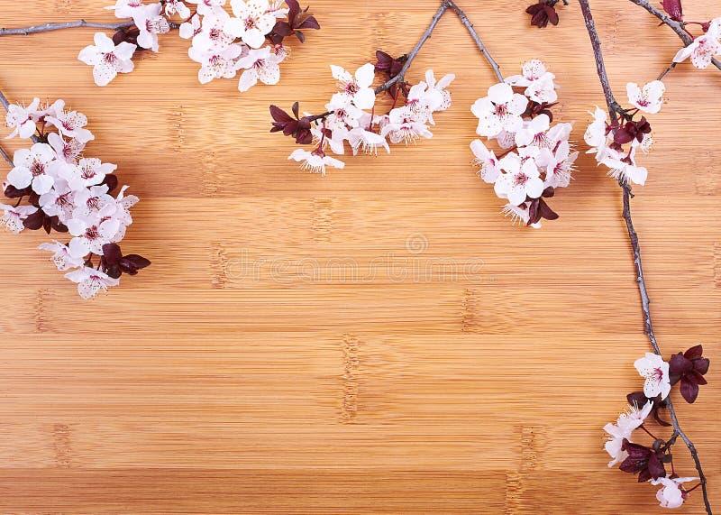 Download Fundo da mola com flores foto de stock. Imagem de verão - 29837694