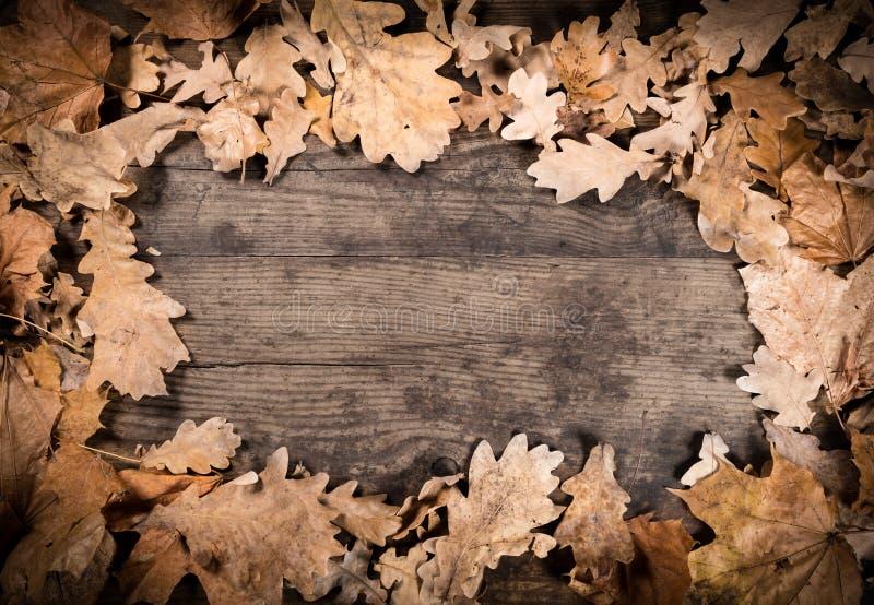 Fundo de madeira com folhas murchos foto de stock royalty free