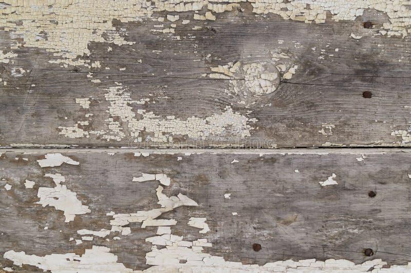 Fundo de madeira da cerca ou da parede com pregos oxidados foto de stock