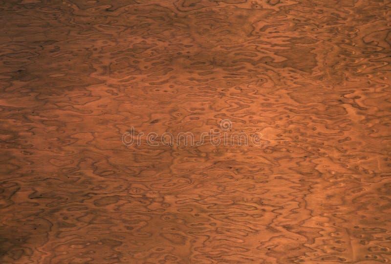 Fundo de madeira da grão folheado decorativo raiz da noz foto de stock royalty free