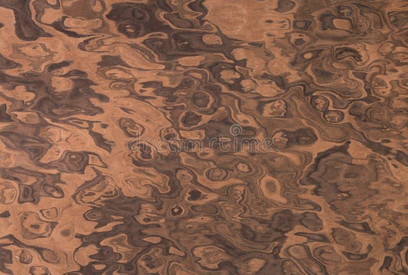 Fundo de madeira da grão folheado decorativo raiz da noz Máscara clara fotografia de stock