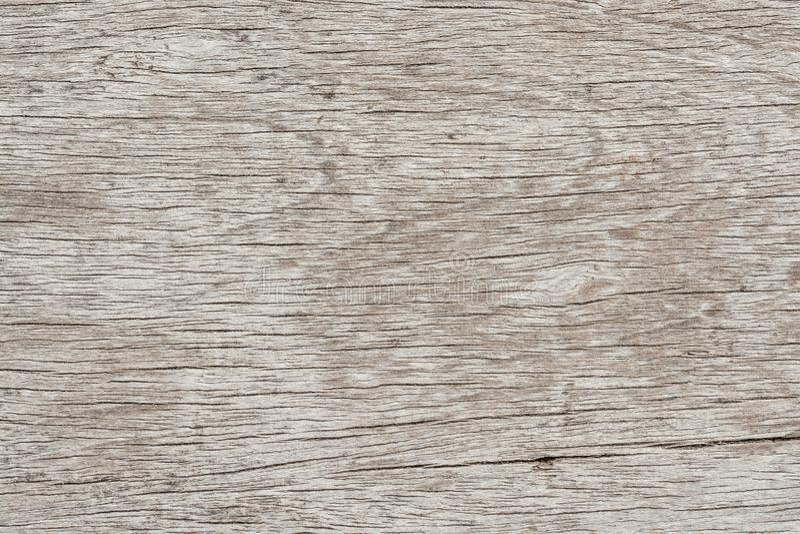 fundo de madeira da grão, vazio para o projeto imagem de stock royalty free