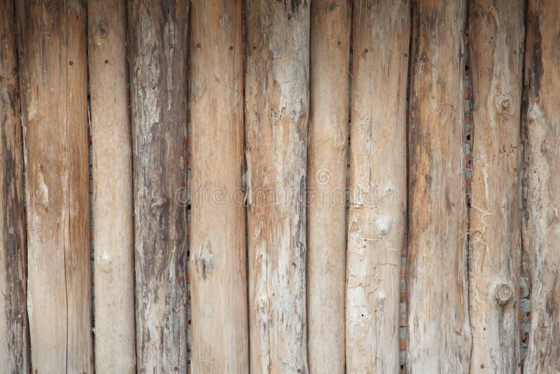 Fundo de madeira da natureza do registro foto de stock royalty free