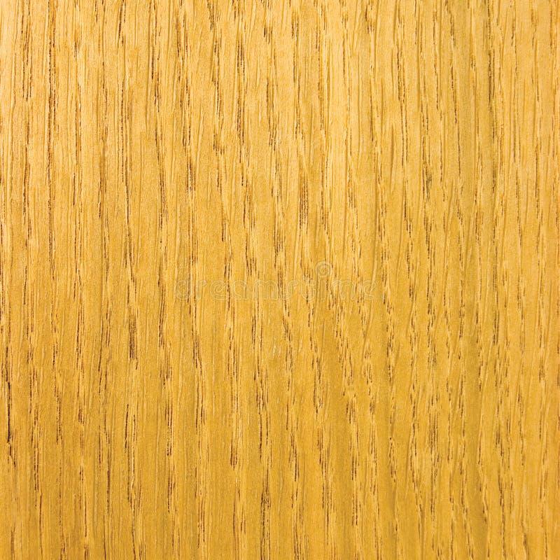 Fundo de madeira da textura do folheado do carvalho da luz natural imagens de stock royalty free