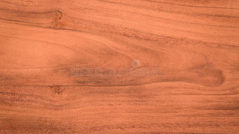 Fundo de madeira da textura da parede da prancha Placa para o projeto foto de stock