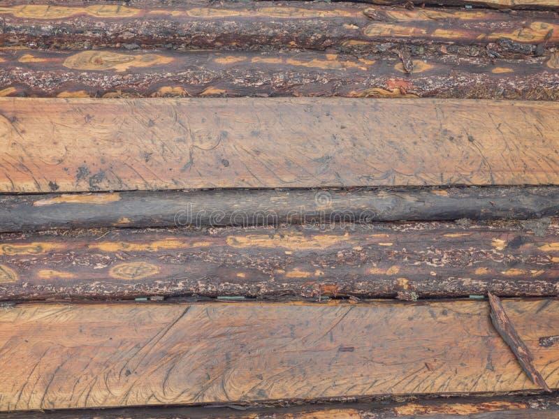 Fundo de madeira da textura Madeira da teca foto de stock
