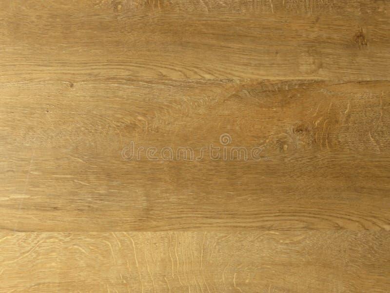 Fundo de madeira do teste padrão da textura do carvalho fino Grão excelente da madeira de carvalho do projeto imagens de stock