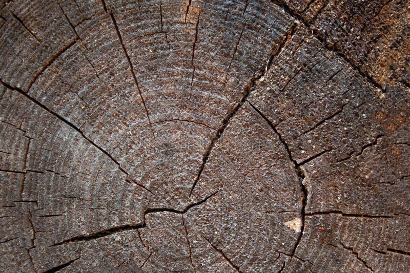 Fundo de madeira envelhecido e resistido fotografia de stock
