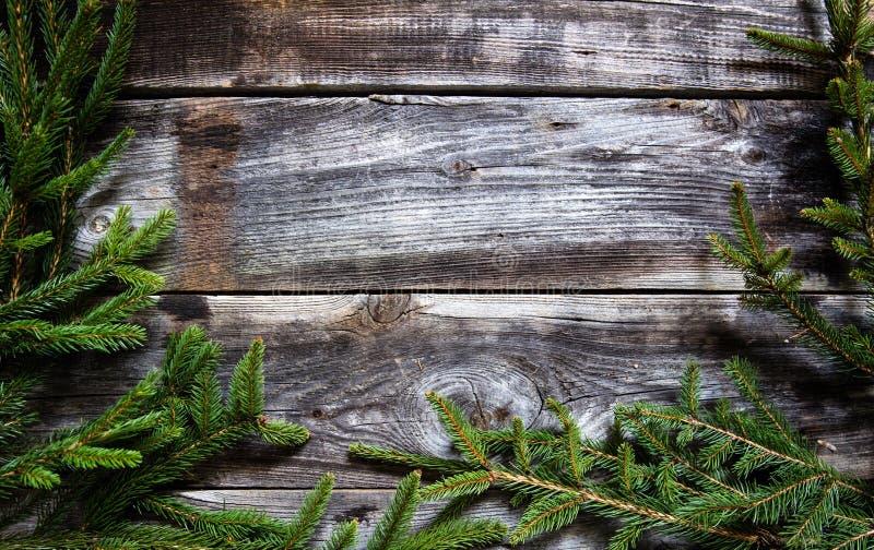 Fundo de madeira escuro com os galhos do abeto para o quadro natural do inverno imagens de stock royalty free