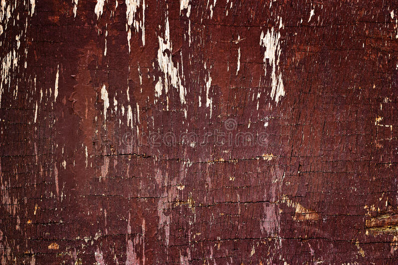 Fundo de madeira escuro vermelho podre e do grunge da textura fotografia de stock royalty free