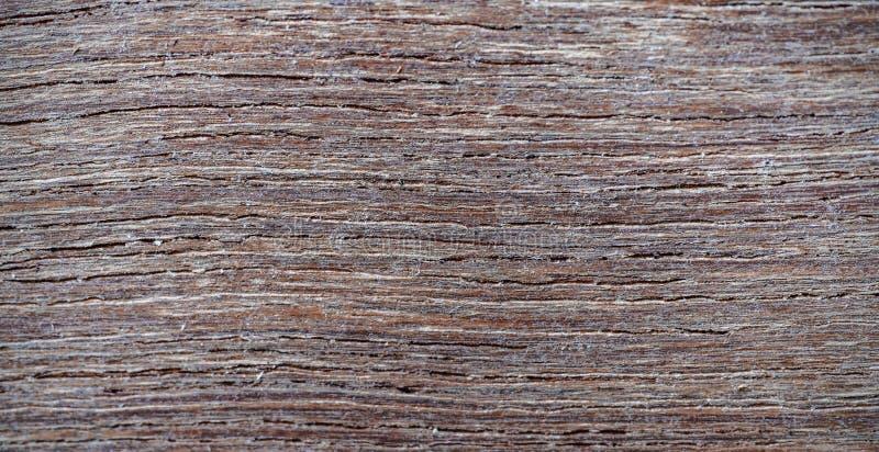 Fundo de madeira de madeira fino da textura imagem de stock royalty free