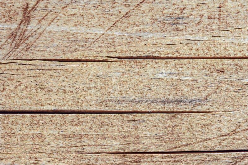 Fundo de madeira natural de madeira da textura de madeira de madeira velha da pele natural foto de stock royalty free