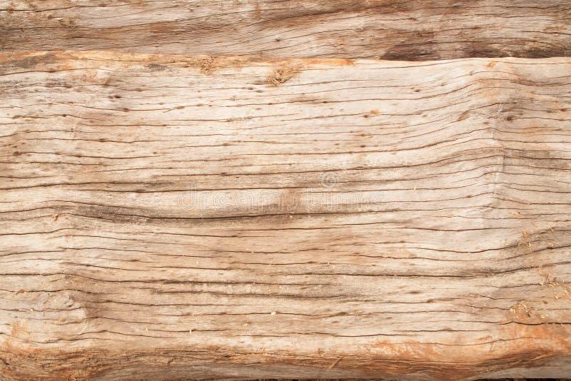 Fundo de madeira natural de madeira da textura de madeira de madeira velha da pele natural imagem de stock