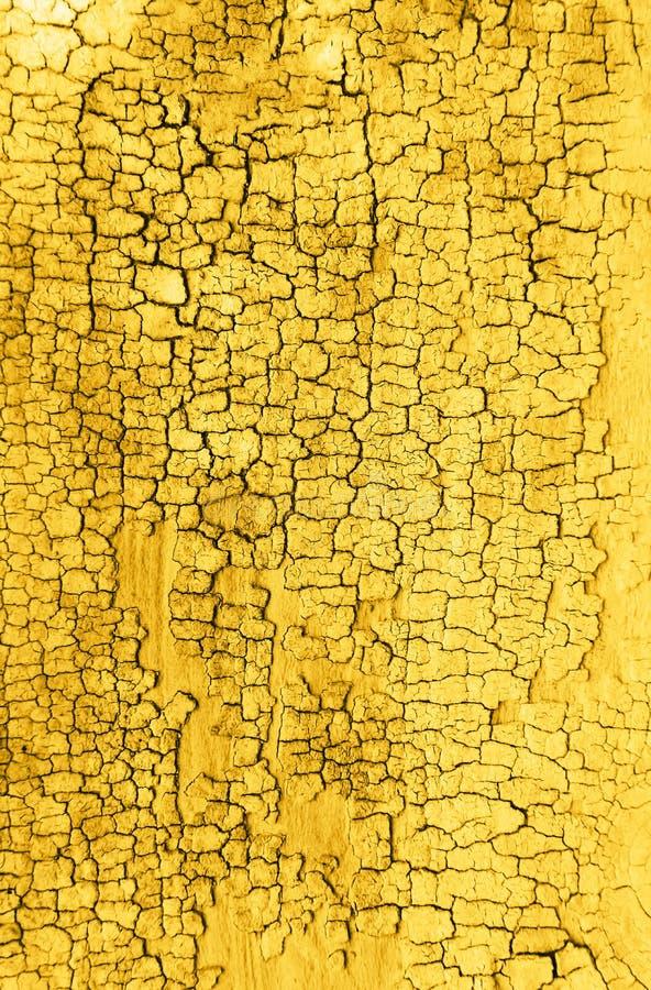 Fundo de madeira velho amarelo da textura foto de stock