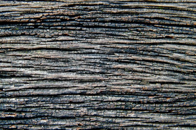 Fundo de madeira velho cinzento da textura imagem de stock