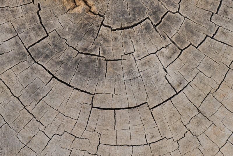 Fundo de madeira velho da textura imagem de stock royalty free