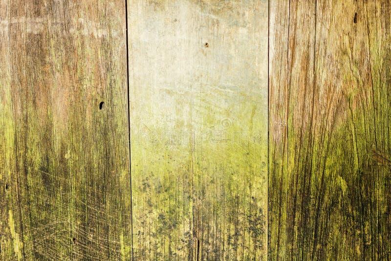 Fundo de madeira velho das pranchas do vintage imagem de stock