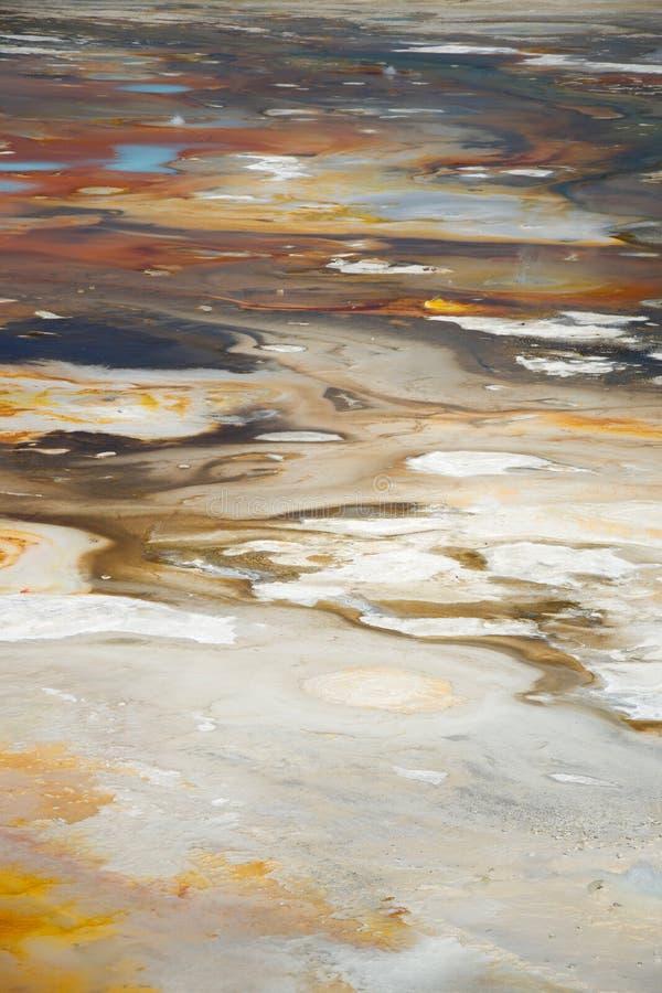 Fundo de Norris Geyser Basin no parque nacional de Yellowstone foto de stock royalty free