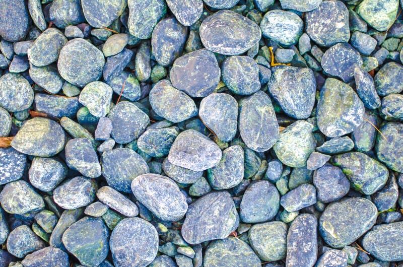 Fundo de pedra da textura dos seixos multicolour para a decoração exterior interior e o projeto de conceito industrial da constru fotos de stock