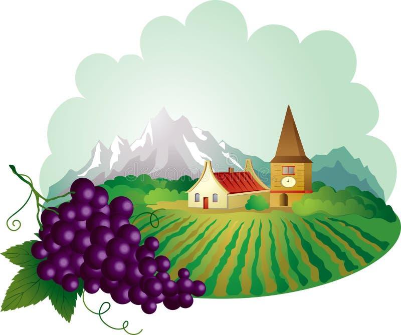 Fundo de Provence com uva ilustração do vetor