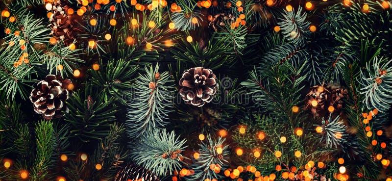 Fundo de ramos de árvore do Natal, abeto vermelho do feriado, zimbro, abeto, larício, cones do pinho com luz Tema do Xmas e do an imagem de stock royalty free