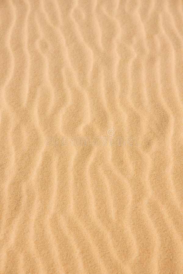 Fundo de Sandy fotografia de stock royalty free