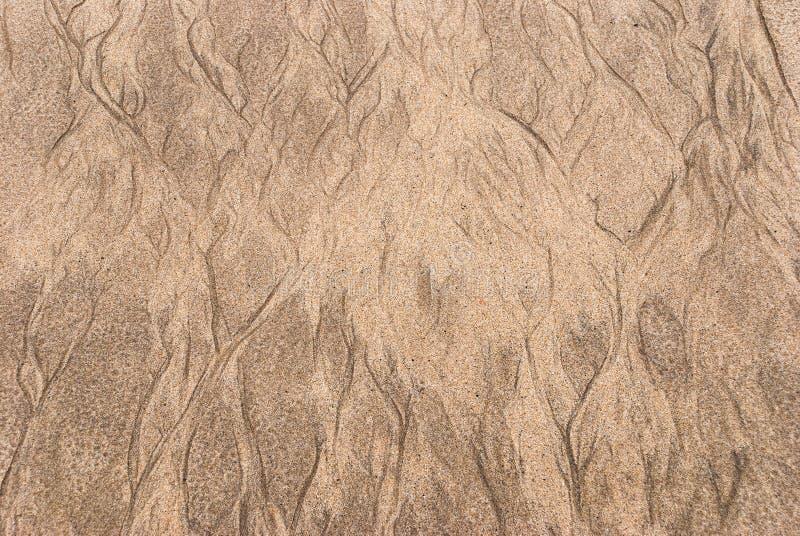 Fundo de Sandy com traços de córregos da água fotografia de stock royalty free