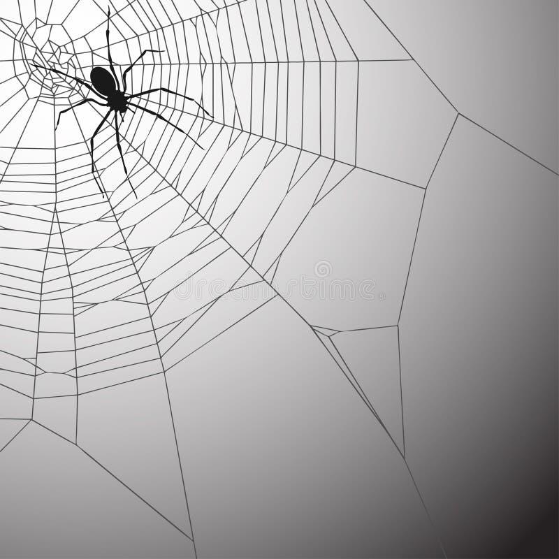 Fundo de Spiderweb ilustração royalty free