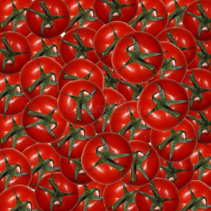 Fundo de tomates frescos vermelhos imagem de stock