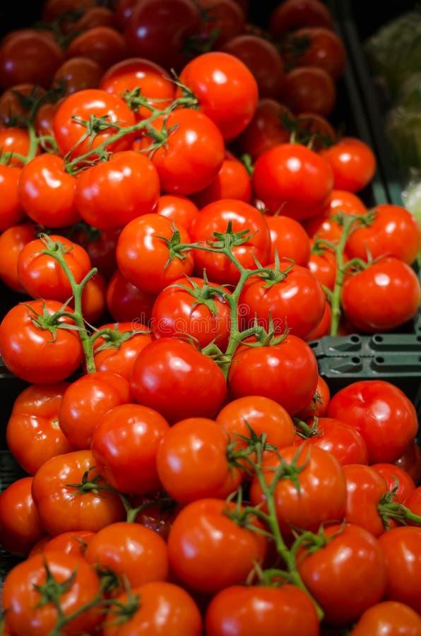 Fundo de tomates vermelhos com ramo imagens de stock