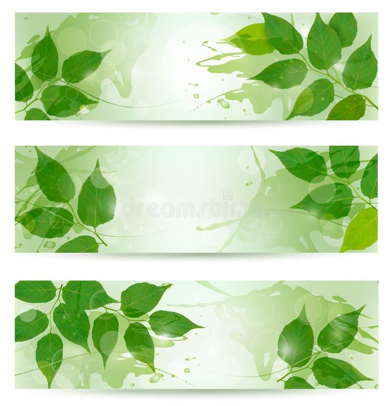 Fundo de três naturezas com as folhas verdes da mola ilustração stock