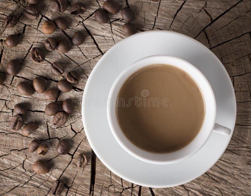 Fundo de um copo pequeno do café quente com leite e um número de feijões de café inteiros subjacentes em um coto rompido imagens de stock