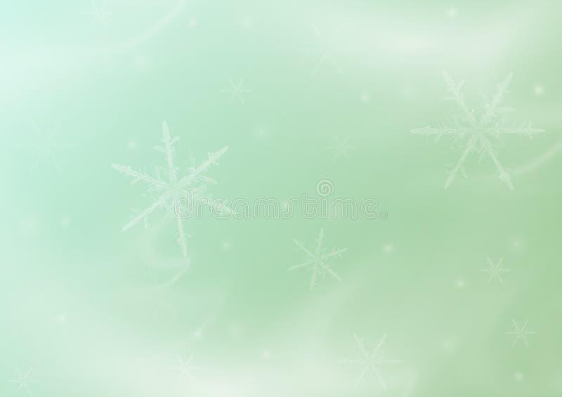 Fundo delicado asbtarktny verde do Natal do inverno com flocos de neve fotos de stock royalty free