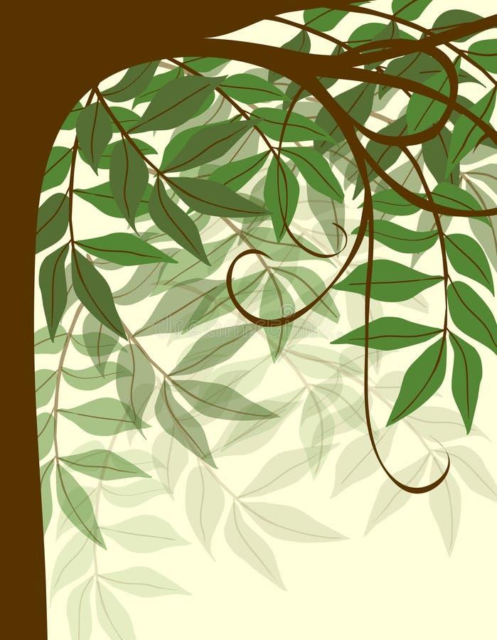 Fundo delicado da árvore ilustração do vetor
