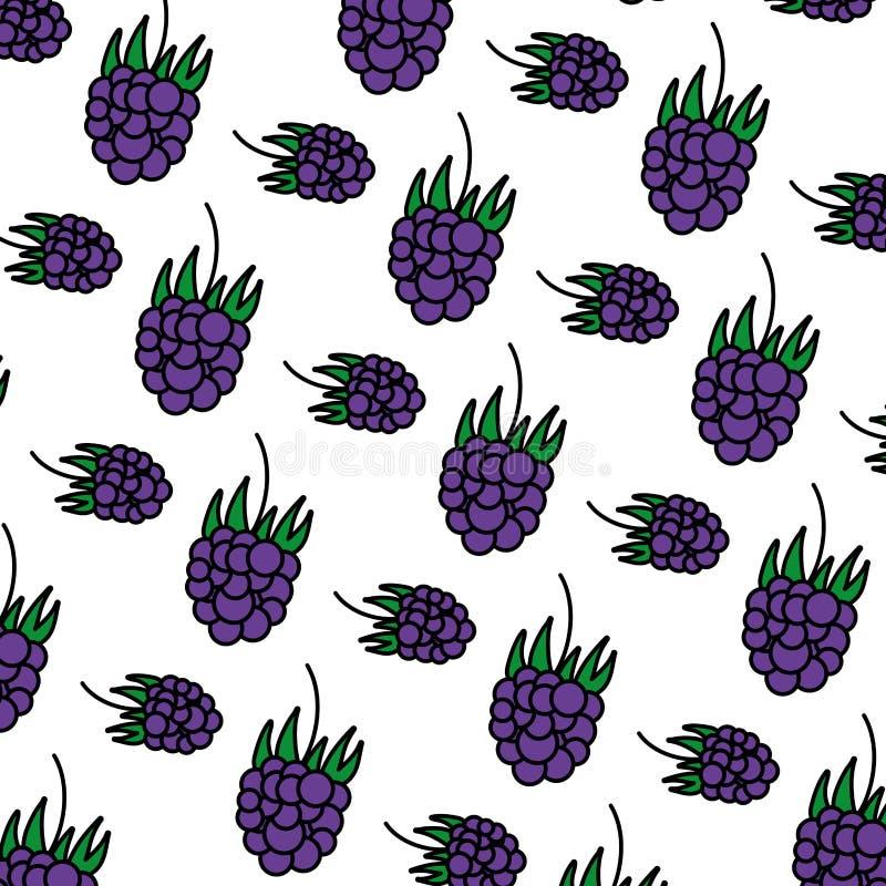 Fundo delicioso do fruto fresco das uvas da cor ilustração stock