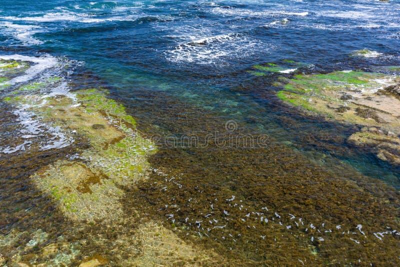 Fundo desobstruído da água de mar Superfície transparente do mar Seascape bonito da costa do Mar Negro perto de Tsarevo, Bulgária imagens de stock