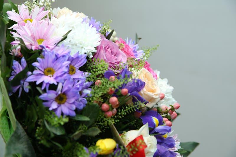 Fundo diferente colorido bonito da foto do close-up das flores Flores coloridos Vermelho, rosa, flores amarelas, roxas fotografia de stock