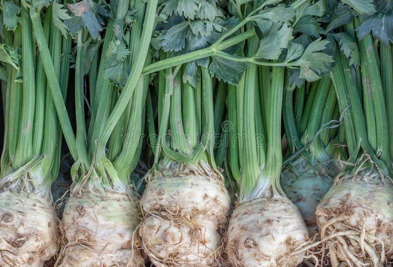Fundo do aipo do mercado dos fazendeiros fotos de stock royalty free