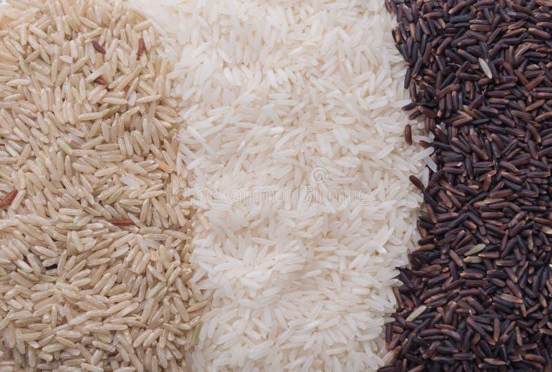 Fundo do alimento com três fileiras de variedades do arroz fotografia de stock