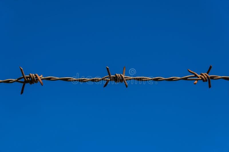 Fundo do arame farpado e do céu azul fotografia de stock
