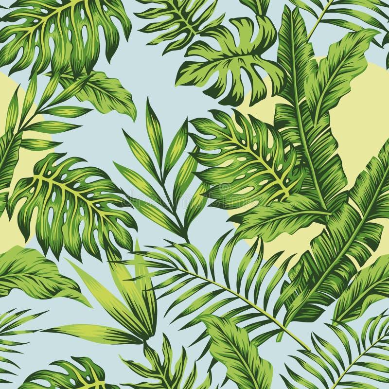 Fundo do céu azul da selva do dia ensolarado ilustração royalty free
