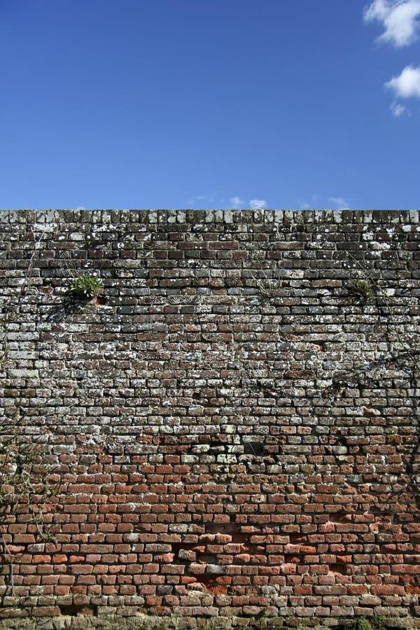 Fundo do céu azul de parede de tijolo foto de stock royalty free