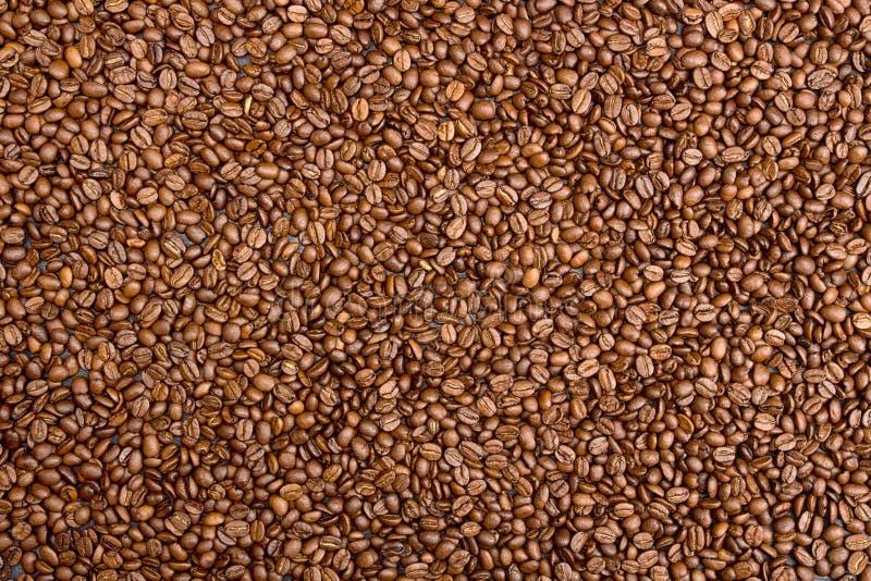 Fundo do café Feijões de café do montão sobre na tabela imagem de stock royalty free