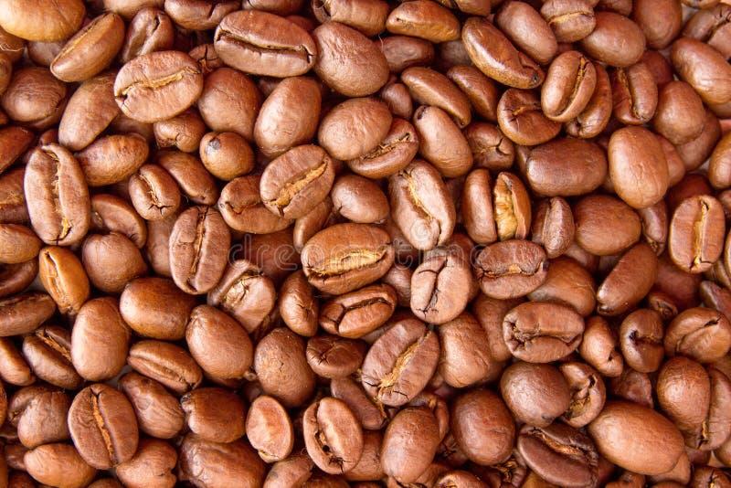Fundo do café Feijões de café roasted montão Vista superior imagem de stock