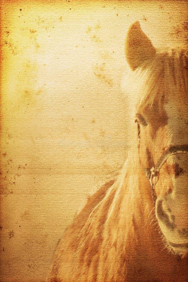 Fundo do cavalo ilustração royalty free