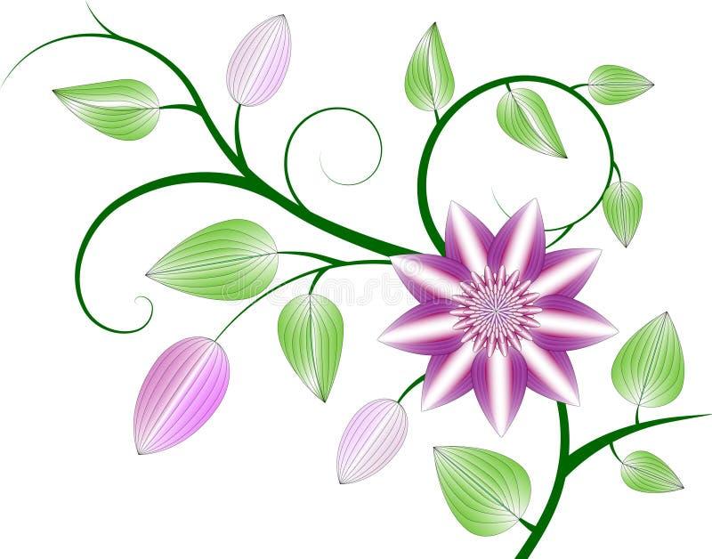 Fundo do Clematis ilustração royalty free
