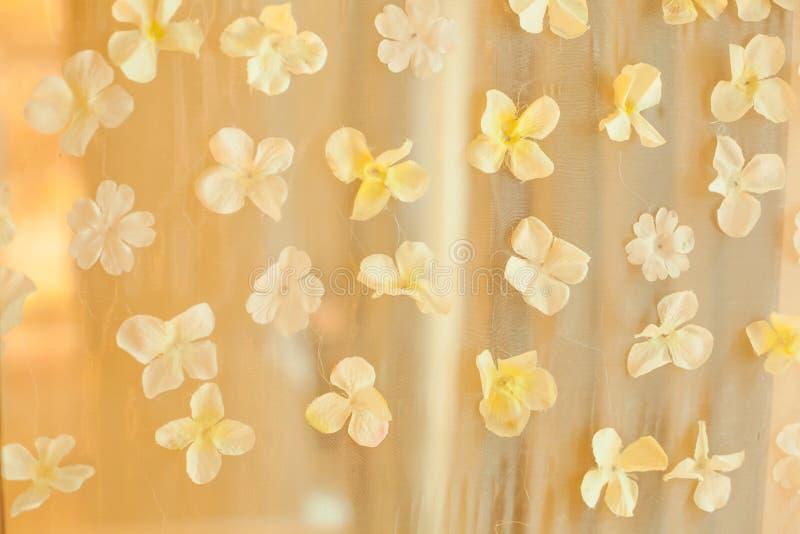 Fundo do contexto do casamento das pétalas da flor branca Evento da ocasião especial de cerimônia de casamento, conceito da decor imagem de stock