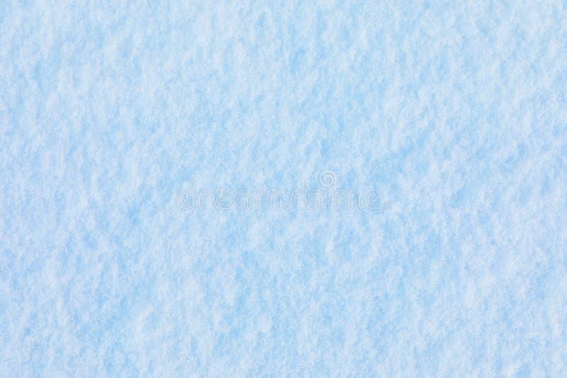 Fundo do cristal da neve e de gelo ou textura do parque do russo da floresta imagem de stock