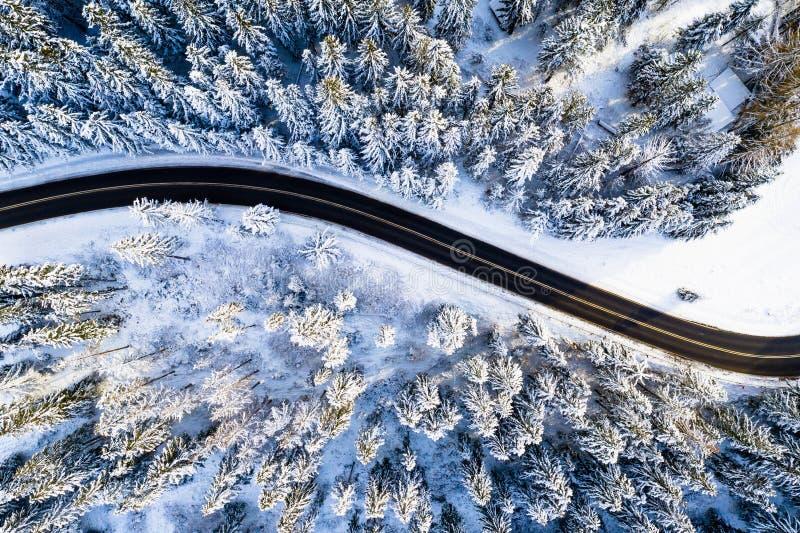 Fundo do curso Estrada preta na floresta branca coberta com a neve Opinião aérea do zangão fotografia de stock royalty free