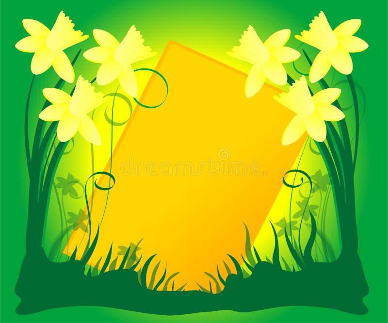 Fundo do Daffodil ilustração do vetor